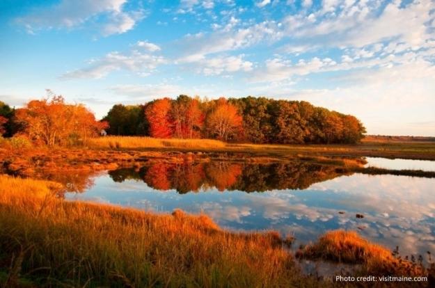 los-scar marsh fall