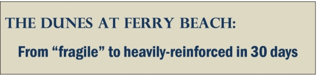 ferry dunes title box