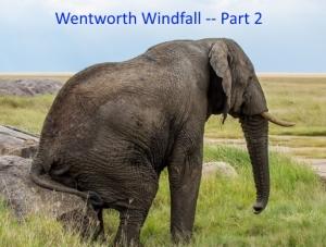 los-elephant-ww-2