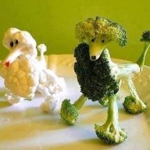 los-veggie-poodles